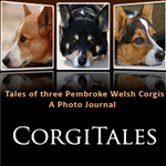 Flashback: Dockers in Corgi Details