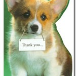 Giving Thanks with Corgi Cards