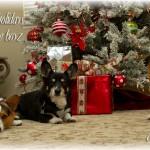 Happy Holidays 2009!